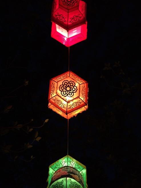 lanternfive